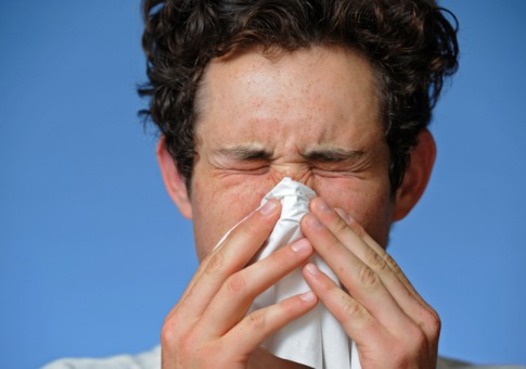 A Brief Overview of Allergies